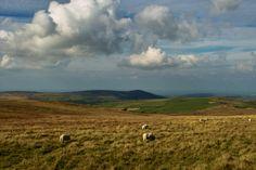 Salisbury Plain, British Countryside, Le Far West, Secret Places, King Arthur, Stonehenge, Merlin, Archaeology, Medieval