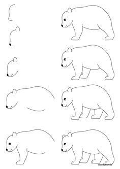 how to draw step by step   learn how to draw a bear with simple step by step instructions