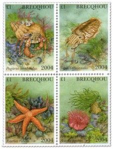stamp-brecqhou-1-2004-sea-creatures