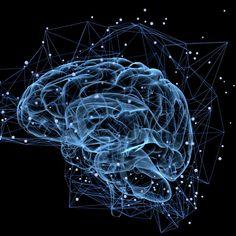 Qual é o seu tipo de inteligência? Existem 9 tipos de inteligência diferentes, e você pode ter 1 ou mais bem desenvolvidas, descubra no artigo.