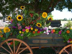 Vintage farm wagon filled with summer's best blossoms. Park in front of a winery or any outdoor venue to greet guests and use as back drop for pictures.
