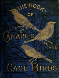 'The Book of Canaries and Cage Birds' by W.A. Blakston, W. Swaysland, and August F. Wiener Published 1878 by Cassell, Petter, Galpin & C...