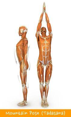Yoga Poses For Lower Back Pain Relief #1 Mountain Pose (Tadasana)