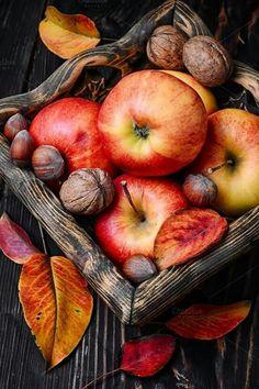 Buy Basket of autumn apples by Nikolaydonetsk on PhotoDune. Stylish wooden basket with autumn harvest, red apples