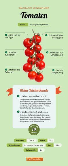 Tomaten >>>>> auch interessant >> SENIOREN - DER TRAUM VON LEBENSABEND ++ Biete 2-er-WG alt + jung >> www.Lebensabendvision.de