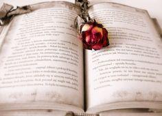 Kirjan ja ruusun päivä 2015
