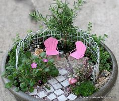 Minature garden...what a great Mother's Day gift! Absolutely love this!
