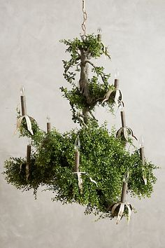 Lighting - This Castlebeck Chandelier looks like it was plucked from a forest. Perfect for when foliage is a must for a space. Unique Lighting, Home Lighting, Exterior Lighting, Light Decorations, Christmas Decorations, Holiday Decor, Belle Plante, Rustic Chandelier, Gardens