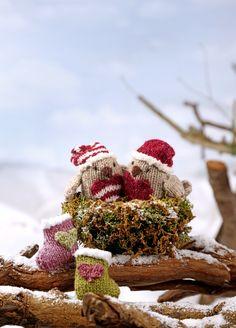 Unicorn Knitting Pattern, Baby Knitting, Knitting Patterns, Strawberry Baby, Knitted Animals, Red Felt, Yarn Needle, Knit Crochet, Christmas Crafts
