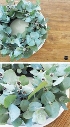 DIY Eucalyptus Wreath How to make this Scandinavian Inspired wreath, that you can use all year round. Diy Christmas Tags, Christmas Ideas, Christmas Countdown Calendar, Eucalyptus Wreath, Scandi Style, Scandinavian, Succulents, Wreaths, Floral