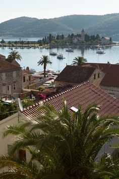 Vis Town: Oldest settlement of Dalmatia. Go to the pier! Try the famous Plavac wine :-)