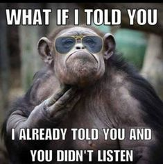 27 Truth Humor memes - Cashier Humor - Cashier Humor meme - - 27 Truth Humor memes Life Quotes & Humor The post 27 Truth Humor memes appeared first on Gag Dad. Hilarious, Funny Work, Funny Sarcasm, Funny Stuff, Funny Pictures With Captions, Picture Captions, Funny Monkey Pictures, Work Memes, Animals