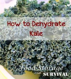 How to dehydrate kale for flakes or powder!  Easy!  Food Storage and Survival