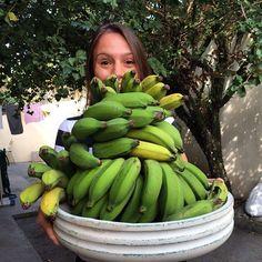BOM DIA! É força de banana  Sempre me perguntam QUAL A MELHOR MANEIRA de usar a Banana verdeBiomassa farinha crua só a casca...? Já fiz Biomassa já descasquei toda a banana verde e congelei...até que aprendi que congelar a banana verde inteira é a melhor opção pois assim a meleca pegajosa não aparece para grudar nos dedos na faca e em tudo o que esse grude acha que tem direito... Eu uso a banana verde congelada como fonte de #amidoresistente que é um #prebiótico já que serve para alimentar…