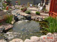 Back yard creek + pond