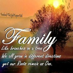 familyquotes | Family quotes