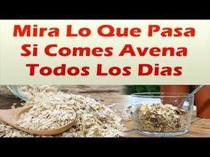 Mira Lo Que Pasa Si Comes Avena Todos Los Dias BAJA LA DIABETES EL COLESTEROL LA PRESION Y MAS - YouTube