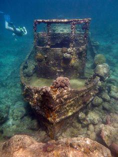 Treasures Of The Sea| Serafini Amelia| Sunken Treasure, Off The Coast Of Curacao | View Vacation Deals!
