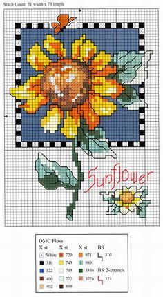 Sunflower Chart