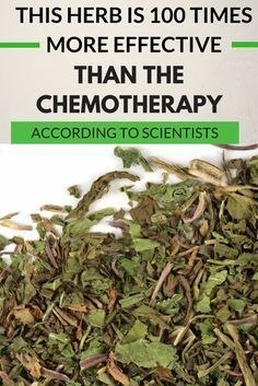 This Herb Is 100 Times More Effective Than The Chemotherapy - According To Scientists