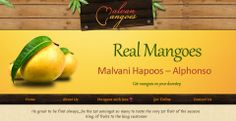 Its great to be first always....be the 1st amongst so many to taste the very 1st fruit of the season King of fruits to the king customer  Visit on http://www.malvanmangoes.com/