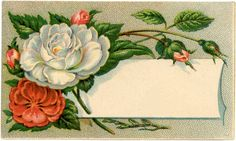 Antique Floral Calling Card Image. always wanted to paint a few of these with snarky sentiments in them for laughs.