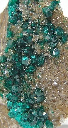 Emerald Green Druzy Dioptase Crystals on matrix   ❦ CRYSTALS ❦ semi precious stones ❦