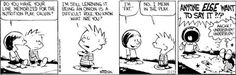 """HAHAHAHAHA!  Calvin and Hobbes: learning the dangers of the term """"fat"""""""