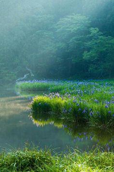 Blue green beauty