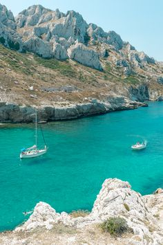Life at the Calanques (France)