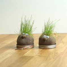 Cute DIY project to make with your kids