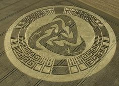 Crop circle ~ mind blowing creation...I love to see people standing in a crop circle...it gives one an idea of the enormity if their size