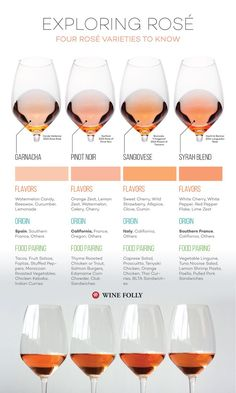 Explore four top varieties used for rosé wine. While these wines may look similar in terms of color, they are a world apart when it comes to flavors and food pa