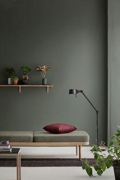 Un mur immaculé gris vert dont les plantes rappelle la couleur, pour un style épuré