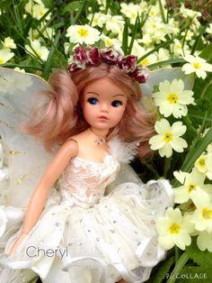 Sindy fairy