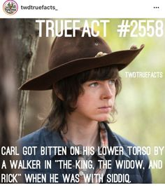 Carl deserved better! RIP! Walking Dead Facts, Walking Dead Season 8, Walking Dead Tv Series, Walking Dead Zombies, Fear The Walking Dead, Top Tv Shows, Talking To The Dead, Carl Grimes, Dead Inside