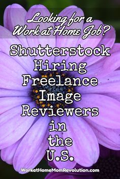 Shutterstock is hiring work at home image reviewers in the Western U.S. These are freelance work at home positions with flexible schedules.