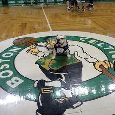 At the Boston Celtics #BIGDAWGSTOUR