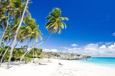 Which Would You Choose: Barbados Or Antiqua? Our Most Exciting Challenge! (4)