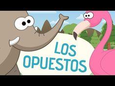 Canción de los opuestos - Canciones Infantiles - Toobys - YouTube