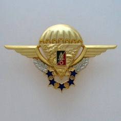 FRENCH FOREIGN LEGION ETRANGERE BADGE - 2 REP - NUMBERED - OPERATIONAL FREE FALL