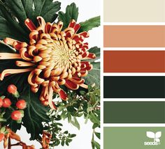 {flora palette} image via: @georgiestclair