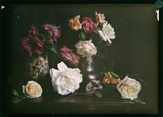 Still life with roses | Clément Maurice | 1907-1930 | National Library Of France | Public Domain