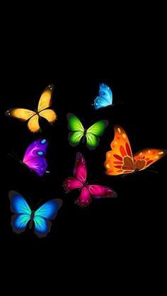 Colorful Butterflies on Black Wallpaper Beste Iphone Wallpaper, Butterfly Wallpaper Iphone, Heart Wallpaper, Love Wallpaper, Cellphone Wallpaper, Colorful Wallpaper, Galaxy Wallpaper, Wallpaper Backgrounds, Black Wallpaper