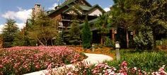 """Disney's Wilderness Lodge in Orlando.   What one of our customers had to say:""""Trip was wonderful! It was so much fun! The children were thrilled and just in awe of everything!!! It was worth a million dollars to see them have so much fun."""""""