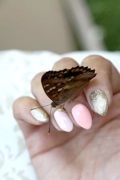 S Y L V E S T R R A * : Semilac: Butterfly Nails