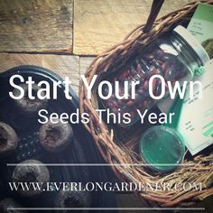 Scared about starting your own seeds?  Here are some helpful tips!