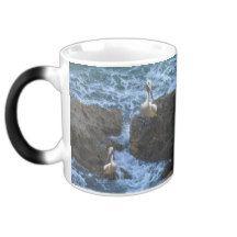 Pelicans_On_Big_Sea_Rocks,_Magic_Morph_Coffee_Mug Morphing Mug