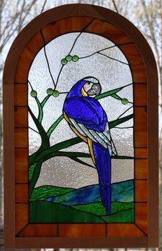Blue Macaw in Rainforest Stained Glass Panel by stainedglassturtle