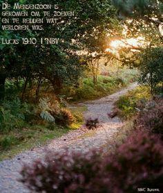 Lucas 19 : 10